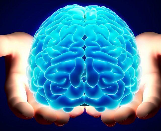 Cervello e gli effetti su di lui dell'esercizio fisico